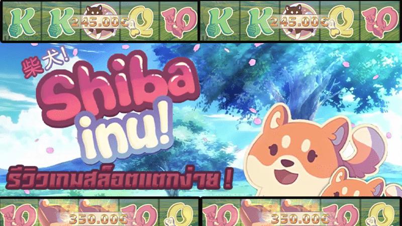 วิวเกมสล็อตน่าเล่น Shiba Inu gamatron น้องหมาพาไปรับเงิน !
