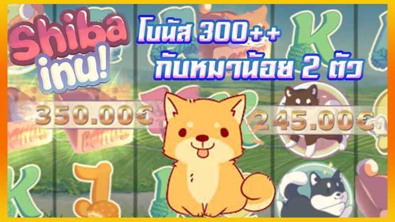 เทคนิคเล่นเกมสล็อตแตกง่าย ด้วยเกมสล็อตออนไลน์ Shiba Inu slot gamatron slot